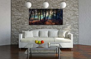 Sherwood Forest Beams - Canvas Print on Wall