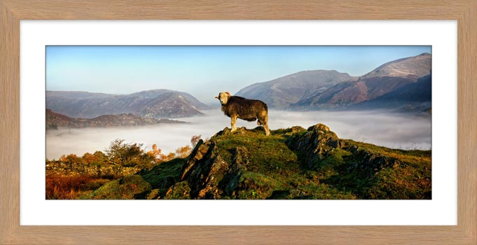 King of Cumbria - Framed Print with Mount