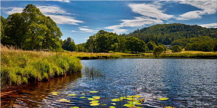 River Brathay Summers Afternoon - Canvas Print