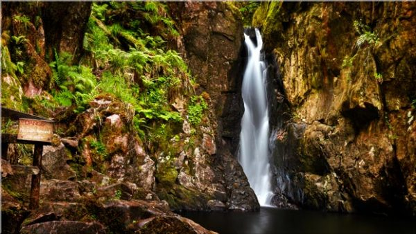 Stanley Ghyll Force Gorge - Lake District Canvas