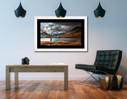 The Buttermere Tree - Framed Print with Mount on Wall