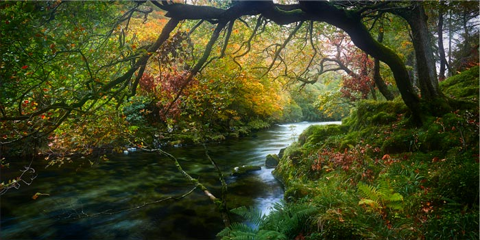 River Derwent in Autumn - Lake District Canvas