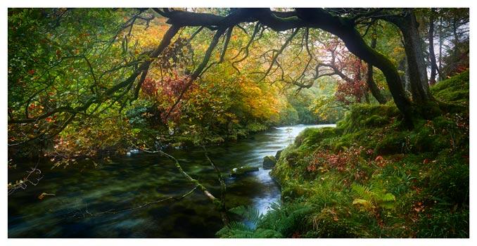 River Derwent in Autumn - Lake District Print