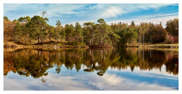 Tarn Hows Autumn Reflections - Lake District Print
