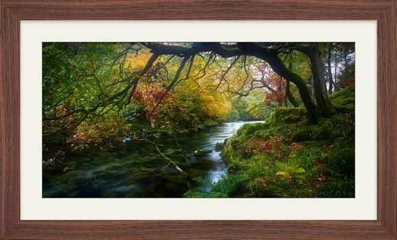 River Derwent in Autumn - Framed Print with Mount