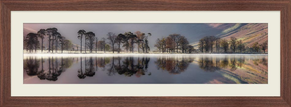 Buttermere Trees Silhouette - Framed Print with Mount