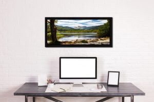 Elterwater Summer Afternoon - Black oak floater frame with acrylic glazing on Wall