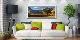 The Buttermere Oak Tree - White Maple floater frame with acrylic glazing on Wall
