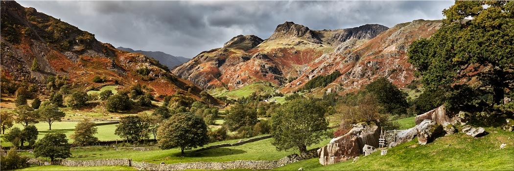 Summer Greens of Langdale - Modern Print