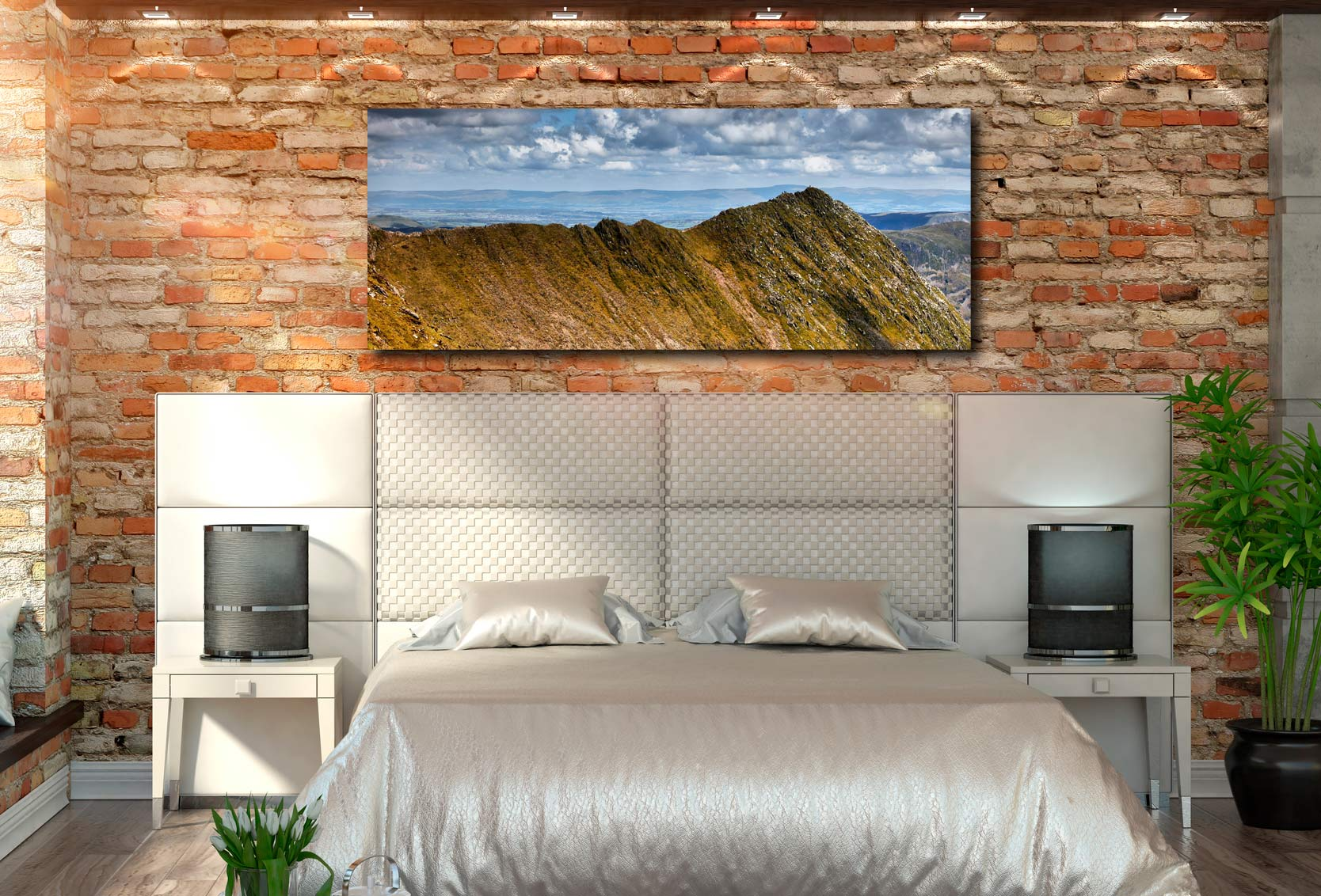 Striding Edge - Print Aluminium Backing With Acrylic Glazing on Wall