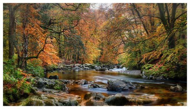 River Esk in Autumn - Lake District Print