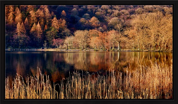 The Browns of Buttermere - Modern Print