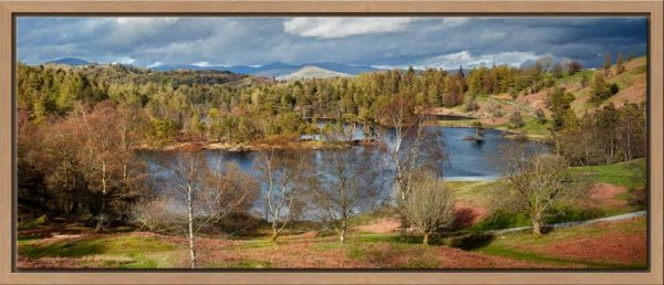 A touch of Spring sunshine lights up Tarn Hows between the April showers